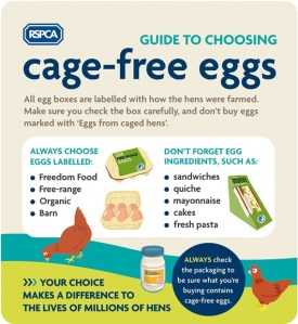 RSPCA guide to cage free eggs