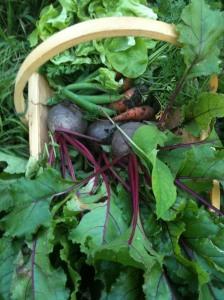 A bounty of veg